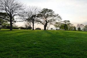 brockwellpark5