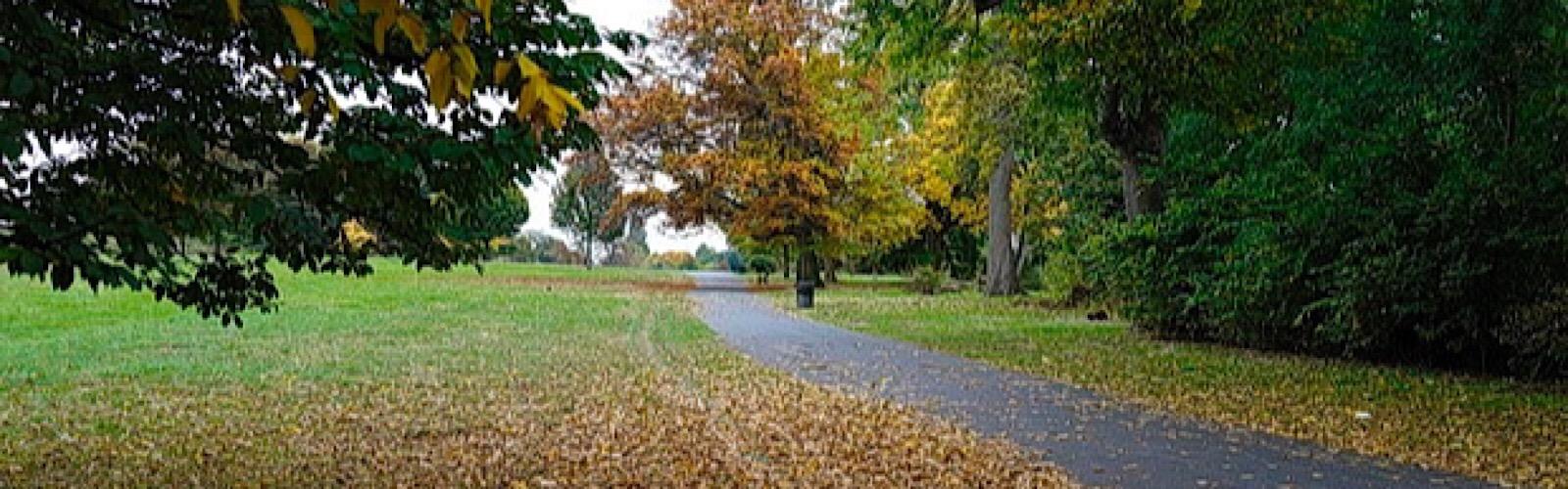brockwell park 1600x500