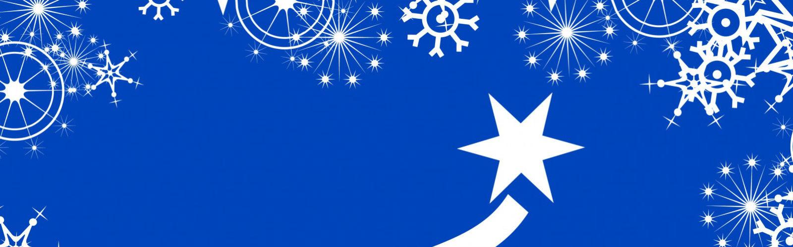 christmas-tree-14464601632qL
